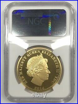 2014 T Da Cunha Pope John Paul II Canonization 1 oz gold NGC PF69UC 500 minted